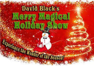 Merry Magical Holiday Show